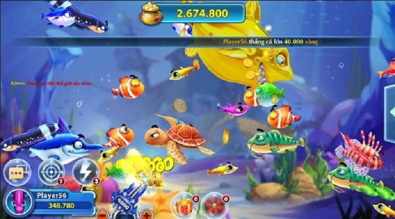 đồ họa Cá Kiếm Club